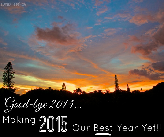 2015 Our Best Year Yet